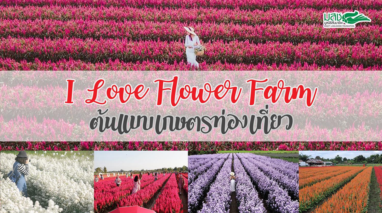 I Love Flower Farm  ต้นแบบเกษตรท่องเที่ยว